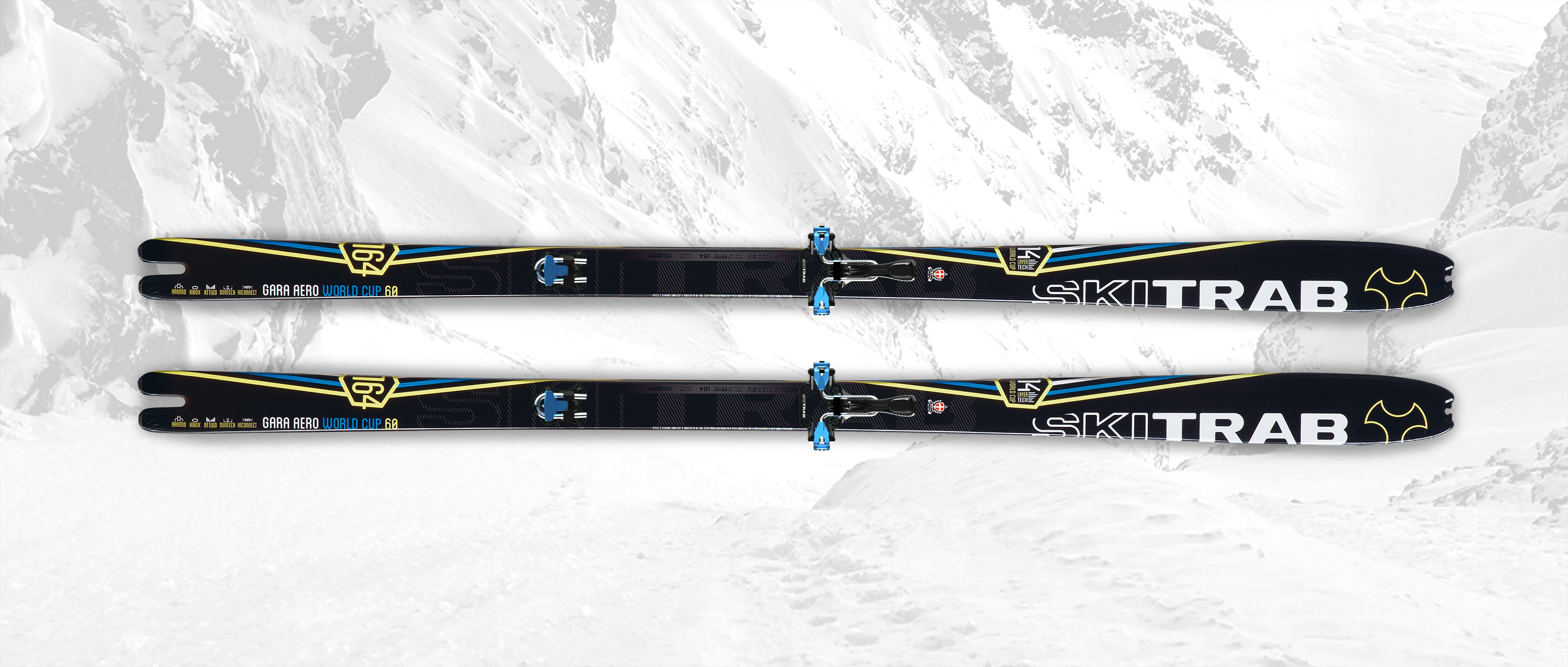 Gara Aero World Cup Ski Flex 6